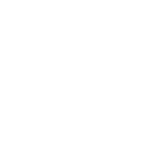 HVN_GastonCounty_Logo